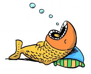 ikan tidur