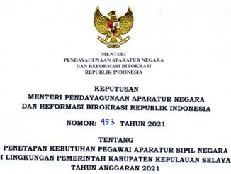 CPNS 2021 Kabupaten Kelupauan Selayar