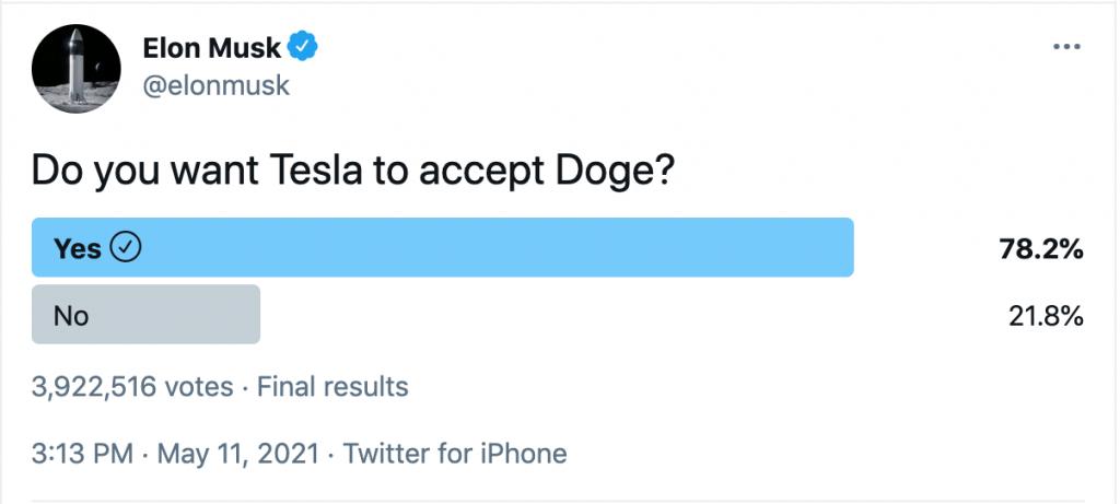 Elon Musk Survey