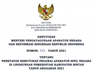 CPNS 2021 Kabupaten Bintan